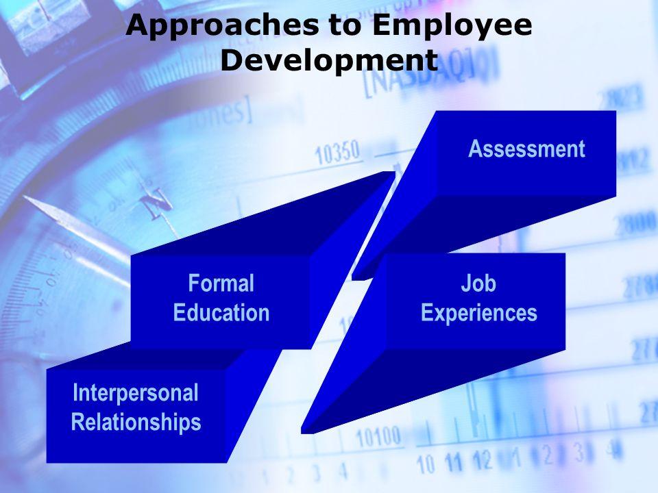 Human Resource Training and Individual Development Employee