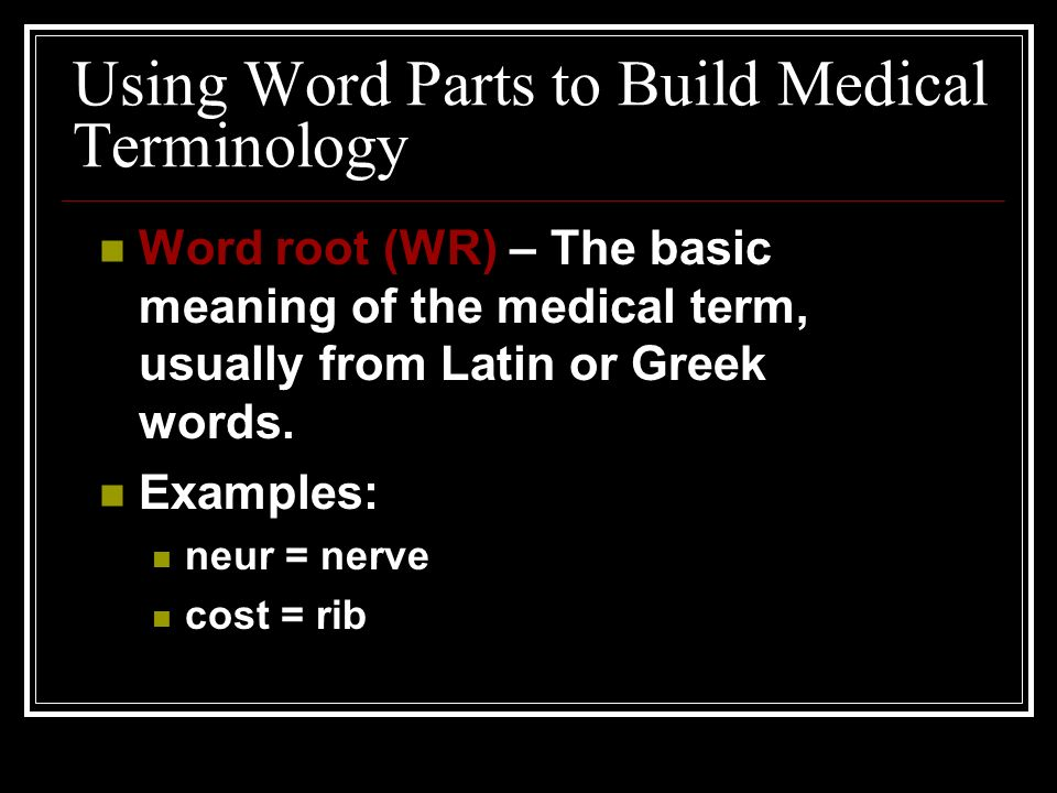 Communication & Medical Terminology Foundations Baccus