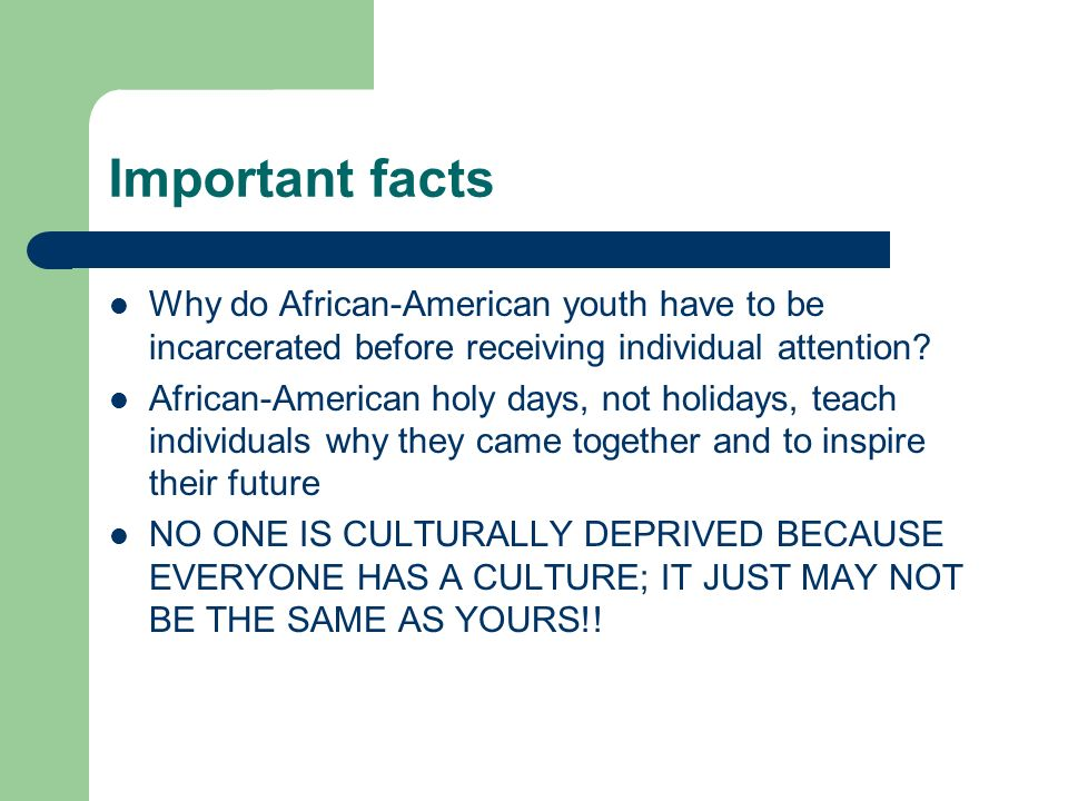 Interesting facts about african americans