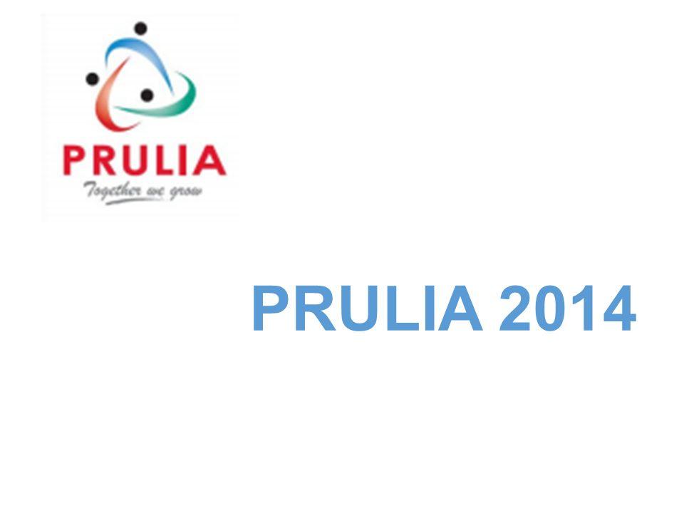 Prulia