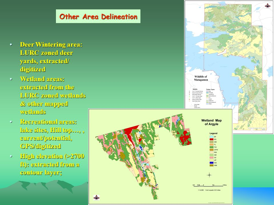 PIN's GIS Application on Forest Management Binke Wang* GIS ... on