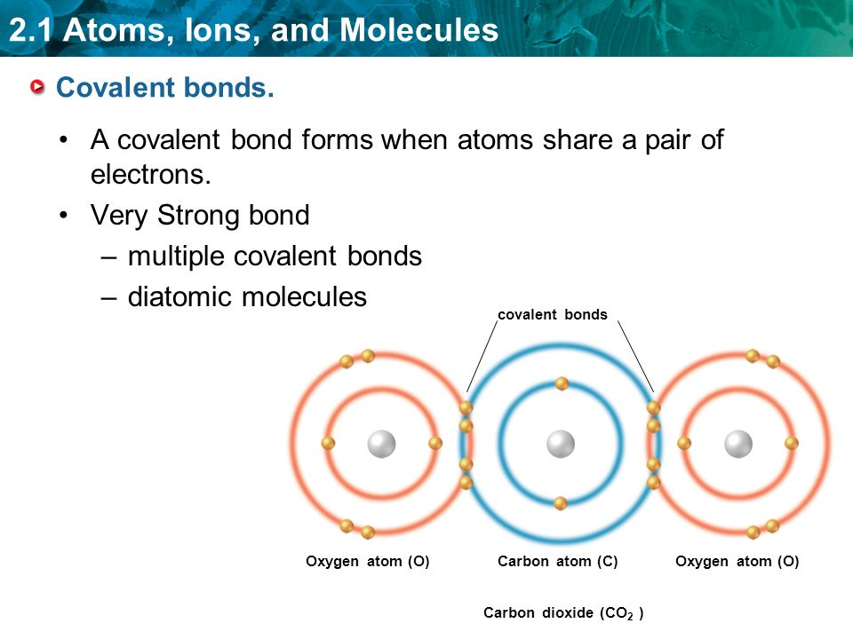 2.1 Atoms, Ions, and Molecules Covalent bonds.