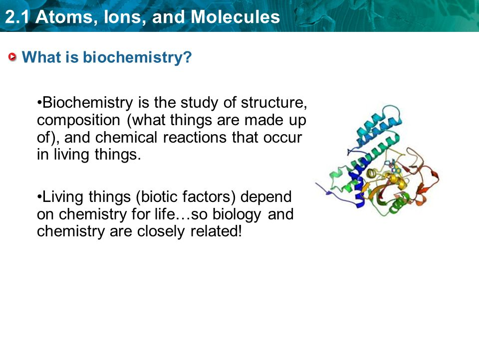 2.1 Atoms, Ions, and Molecules What is biochemistry.