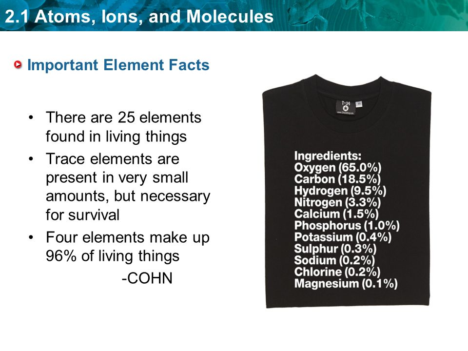 2.1 Atoms, Ions, and Molecules Important Element Facts There are 25 elements found in living things Trace elements are present in very small amounts, but necessary for survival Four elements make up 96% of living things -COHN