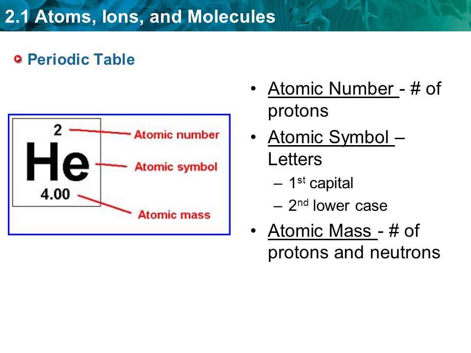 2.1 Atoms, Ions, and Molecules Periodic Table Atomic Number - # of protons Atomic Symbol – Letters –1 st capital –2 nd lower case Atomic Mass - # of protons and neutrons