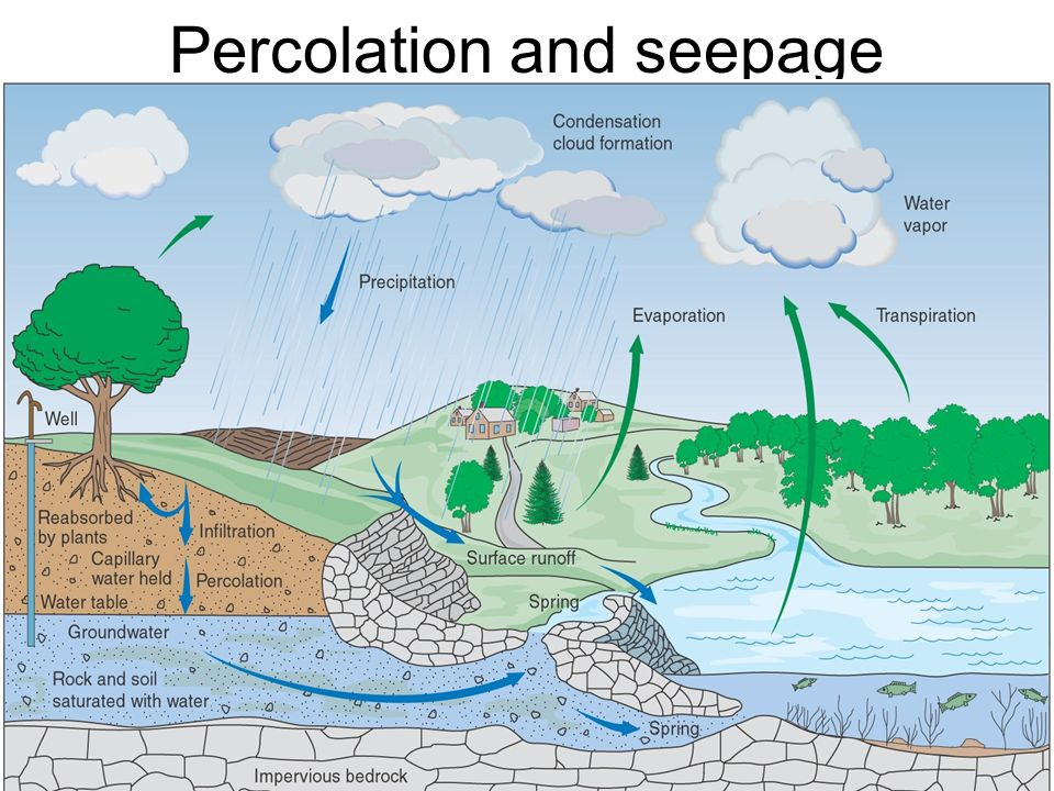 Percolation and seepage