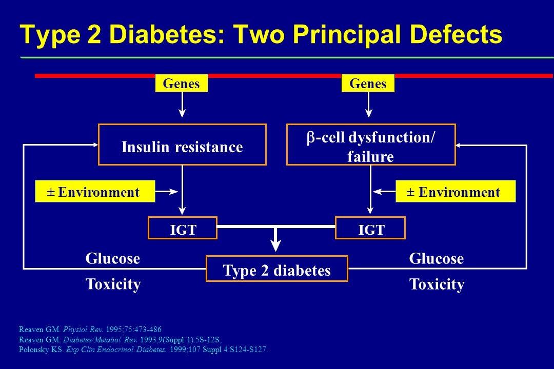 Type 2 Diabetes: Two Principal Defects Reaven GM. Physiol Rev.