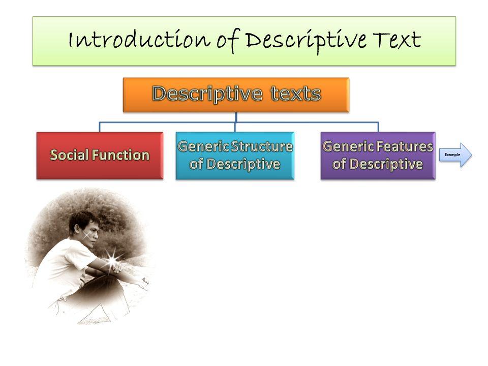 example descriptive text