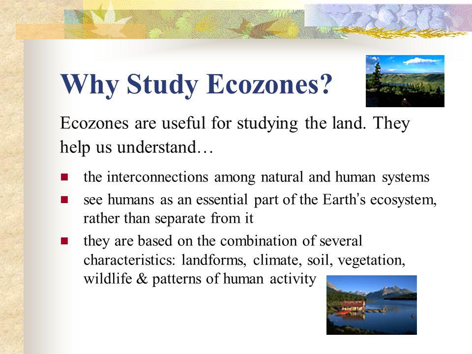 Canada s ecozones grade 9 academic geography class notes ppt 6 map of canada s 5 marine ecozones publicscrutiny Choice Image