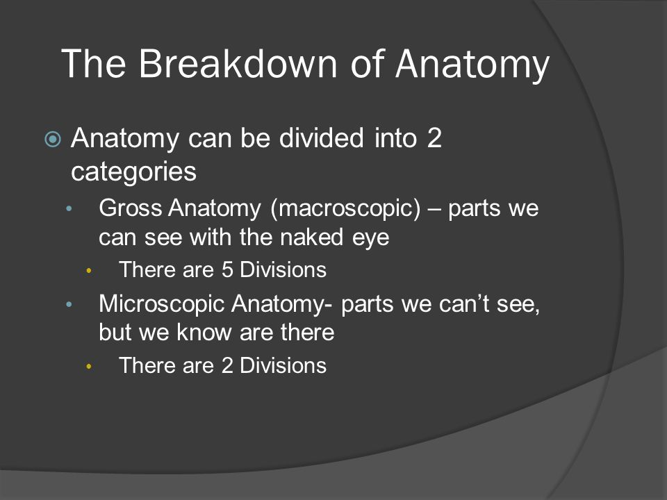 Lesson 1: Introduction to Anatomy and Physiology. - ppt download