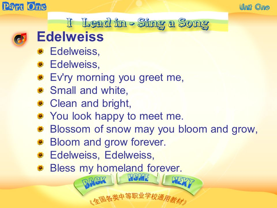 Edelweiss edelweiss evry morning you greet me small and white 2 edelweiss edelweiss evry morning you greet m4hsunfo