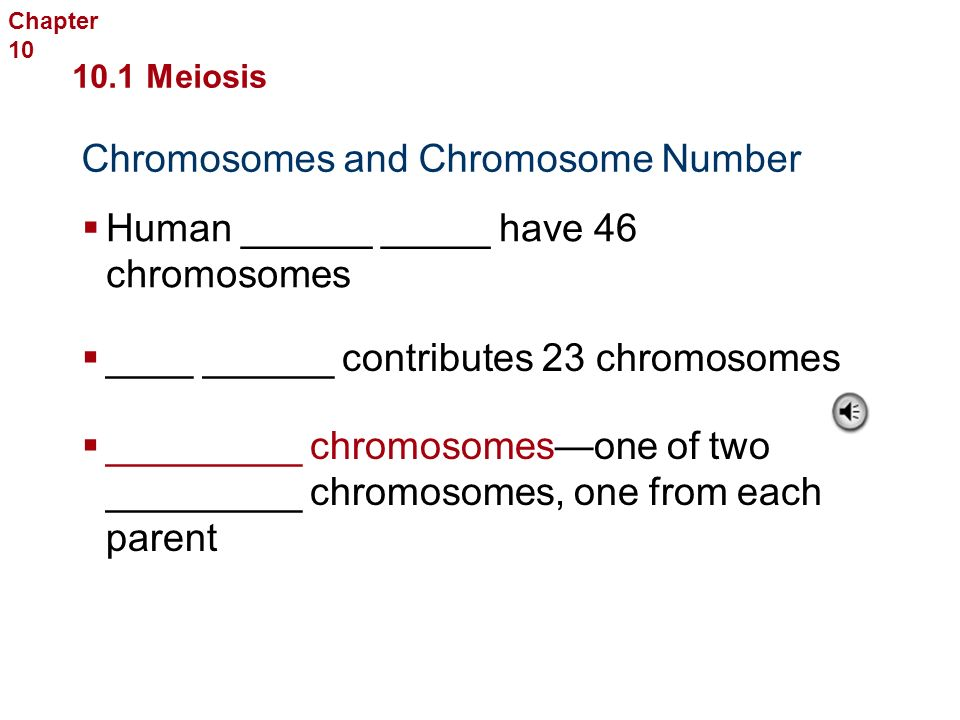 Meaning… Mom has _____ chromosomes Dad has ______ chromosomes You have _____ chromosomes