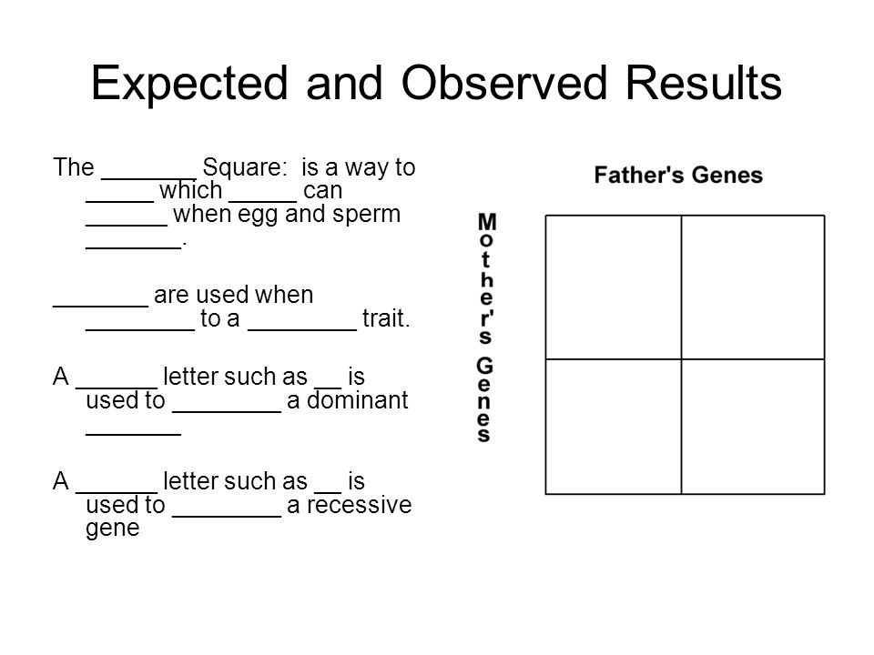 Sexual Reproduction and Genetics Law of _______________ Assortment  _______ distribution of ______ occurs during gamete _____________  _______ on _________ chromosomes sort ___________ during meiosis.