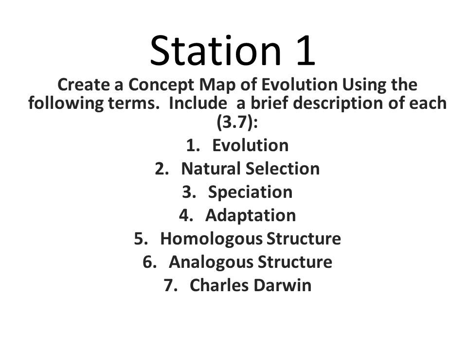 Concept Map About Evolution.Station 1 Create A Concept Map Of Evolution Using The Following