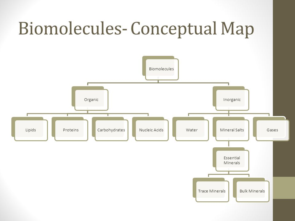 Minerals Concept Map.Biomolecules Conceptual Map Biomoleculesorganic