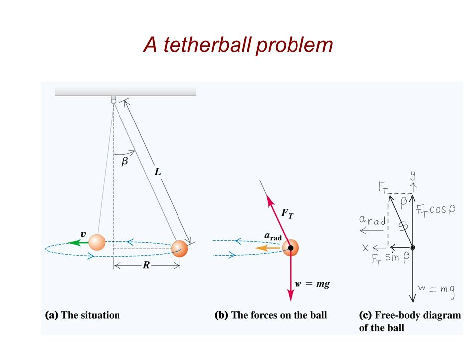 Free Body Diagram Of Tetherball Search For Wiring Diagrams