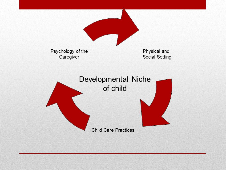 developmental niche