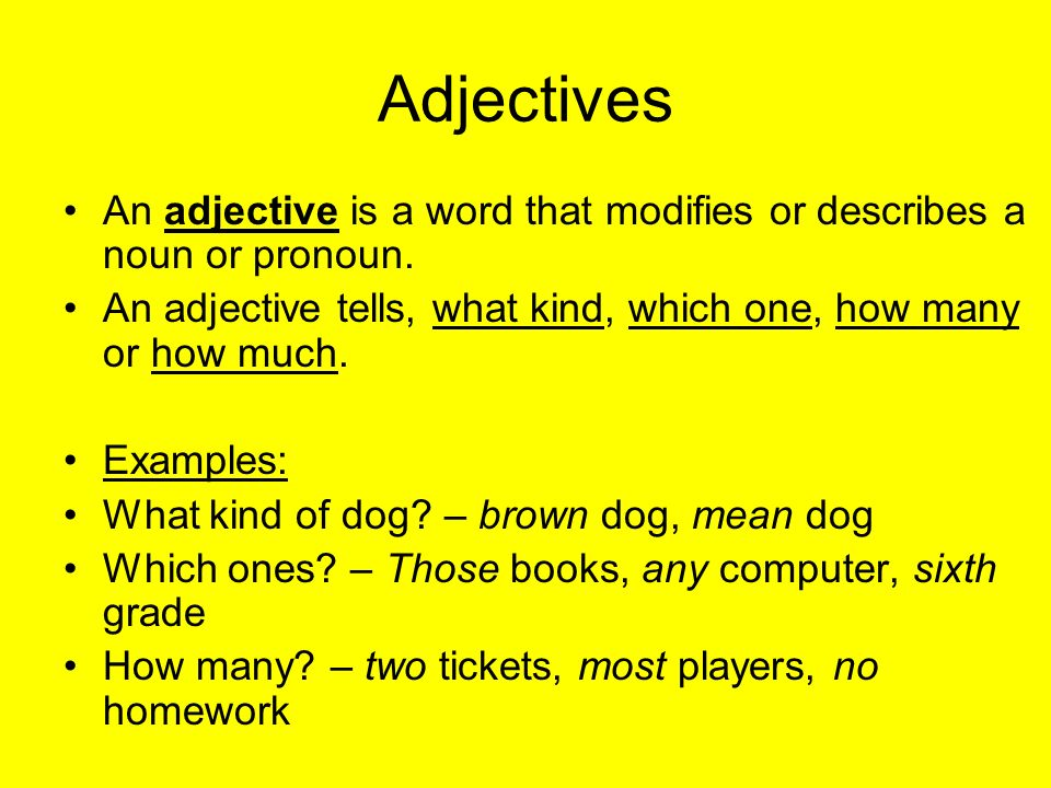 adjectives Learn spanish grammar with our free helpful lessons and fun exercises at studyspanishcom get started on your way to speaking spanish conversationally.