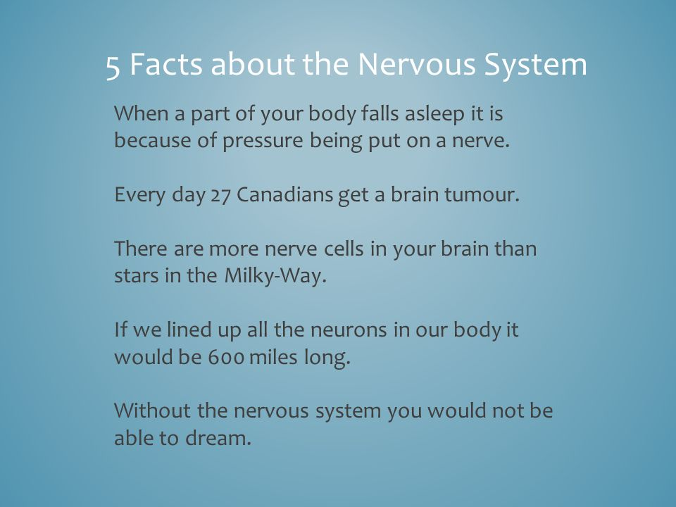 NERVOUS SYSTEM By Jack, Savanna and A.J.. 1)What is the role that ...