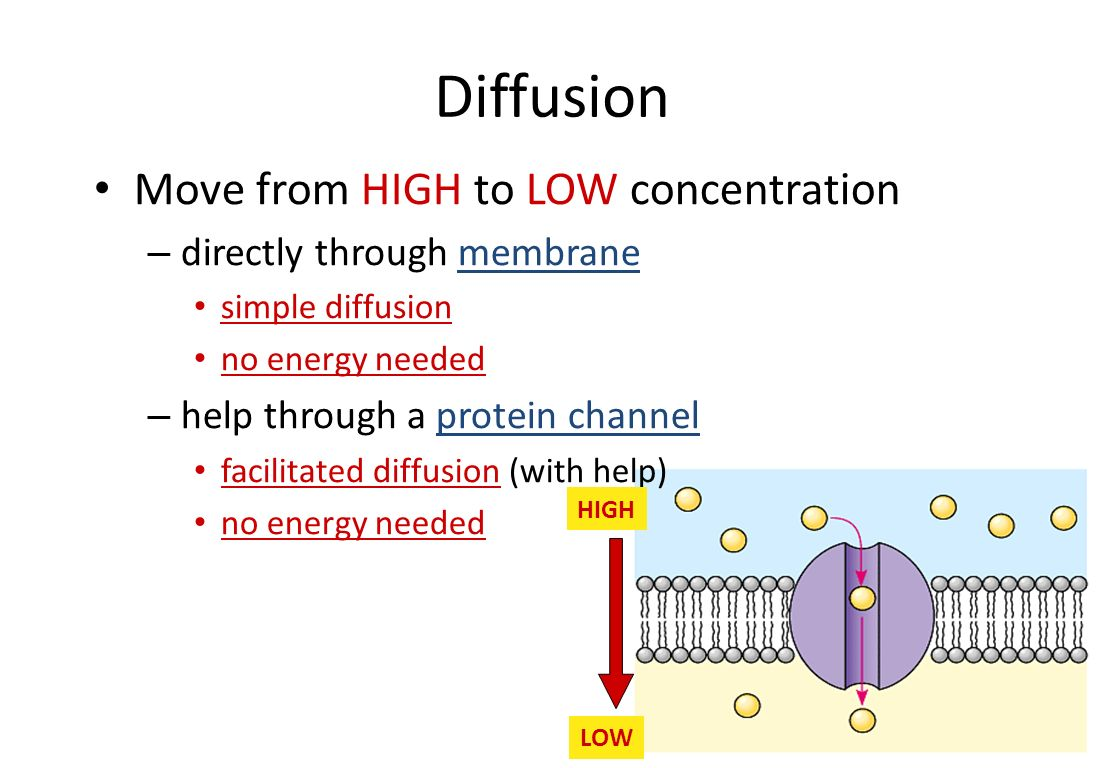 Facilitated Diffusion Move from HIGH to LOW through a channel inside cell outside cell sugar Which way will sugar move.