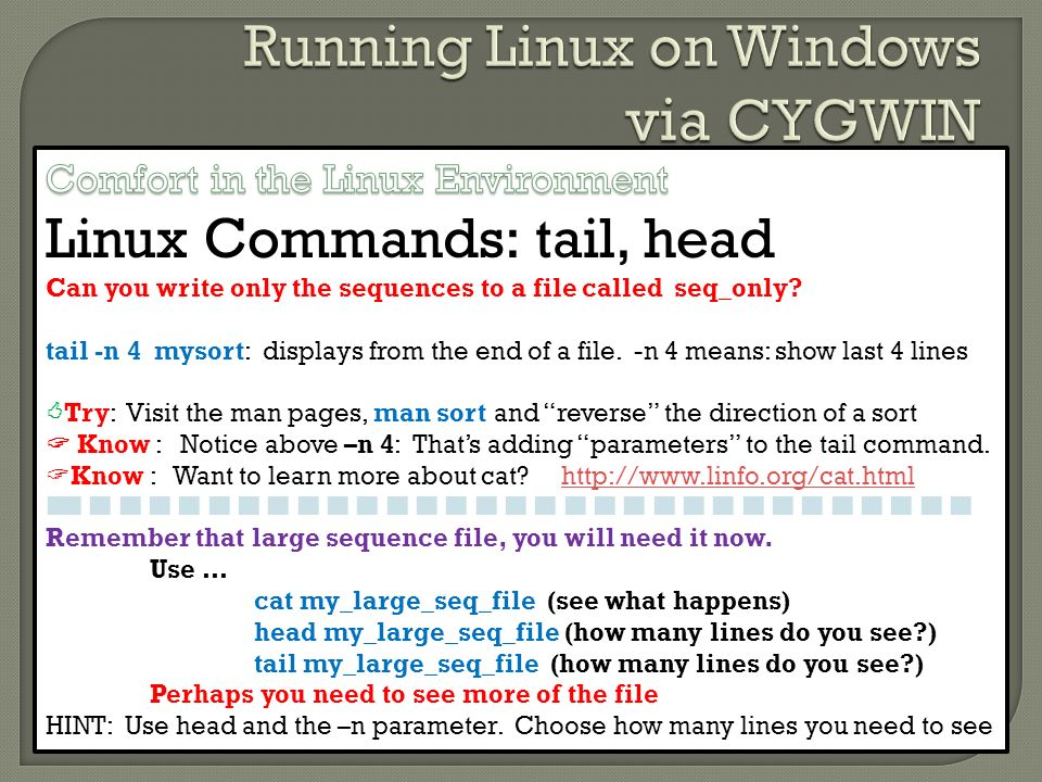 Why Linux and Not Windows? - ppt download