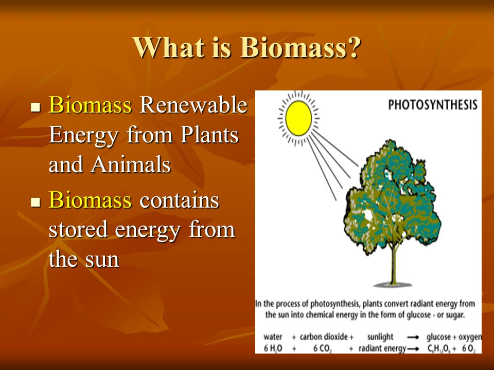 bio mass essay Biomass energy is derived from the organic matters which have been spread across the earth in abundance biomass energy consists of wood and agricultural biomass, solid wastes, landfills gas and alcohol fuels.