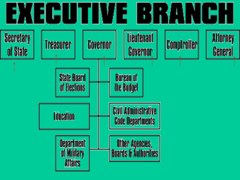 executive branch members do