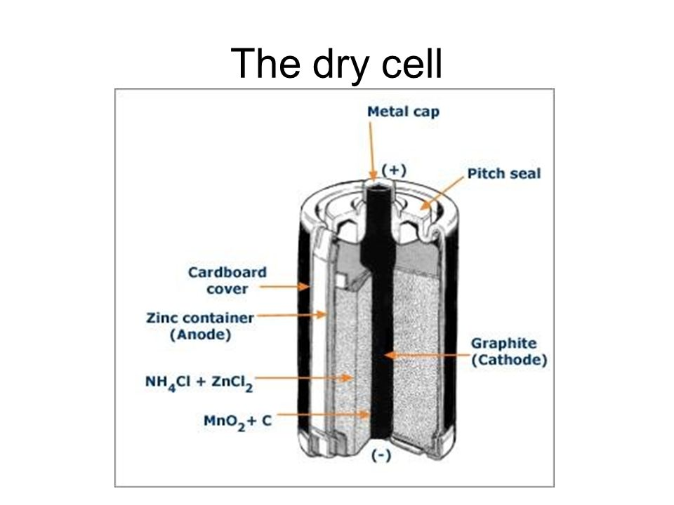 Diagram Of Dry Cell With Labelling Car Wiring Diagrams Explained