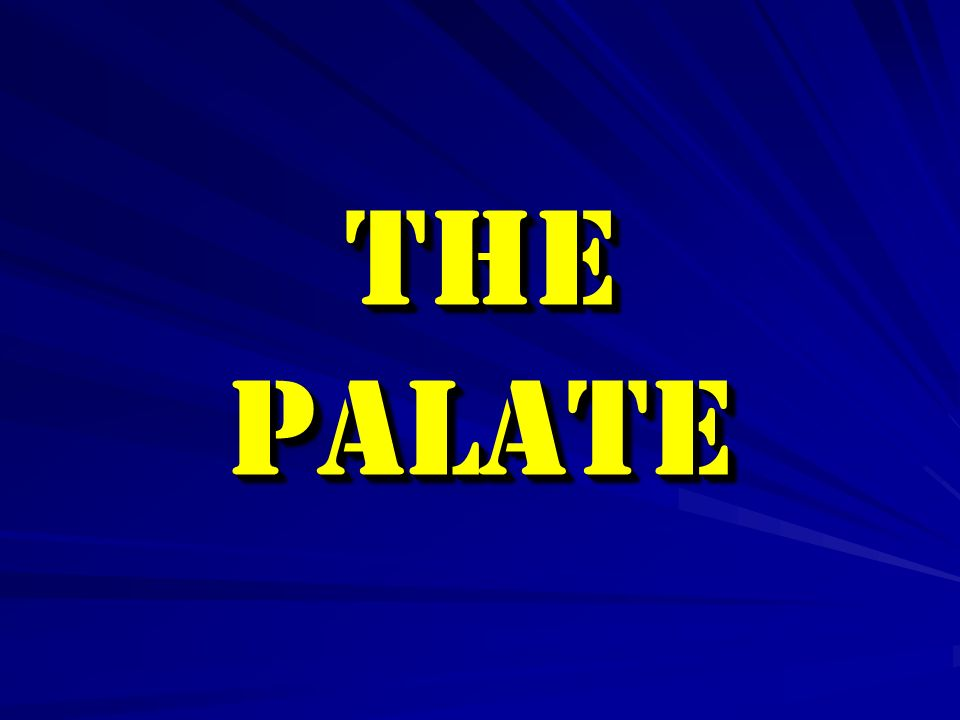 The palate The palate forms the roof of the mouth  It is