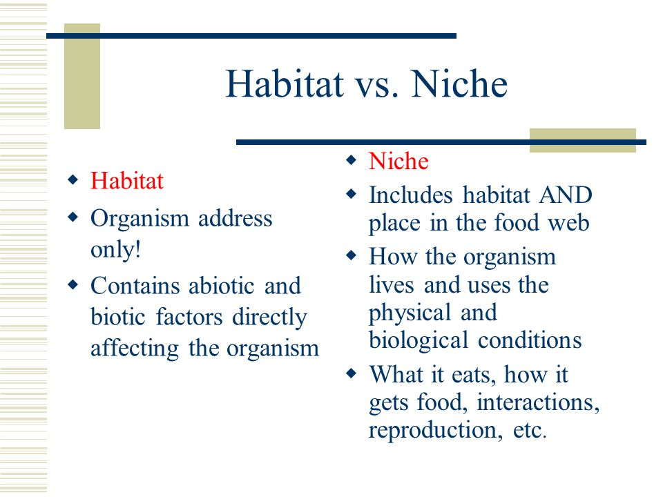what shapes an ecosystem? 4.2 biotic vs. abiotic factors  biotic