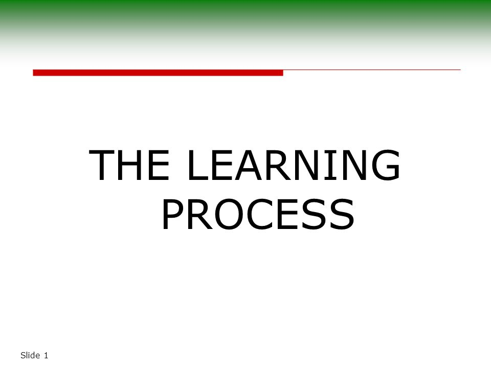 Slide 1 THE LEARNING PROCESS Slide 2 The Nature Of Learning