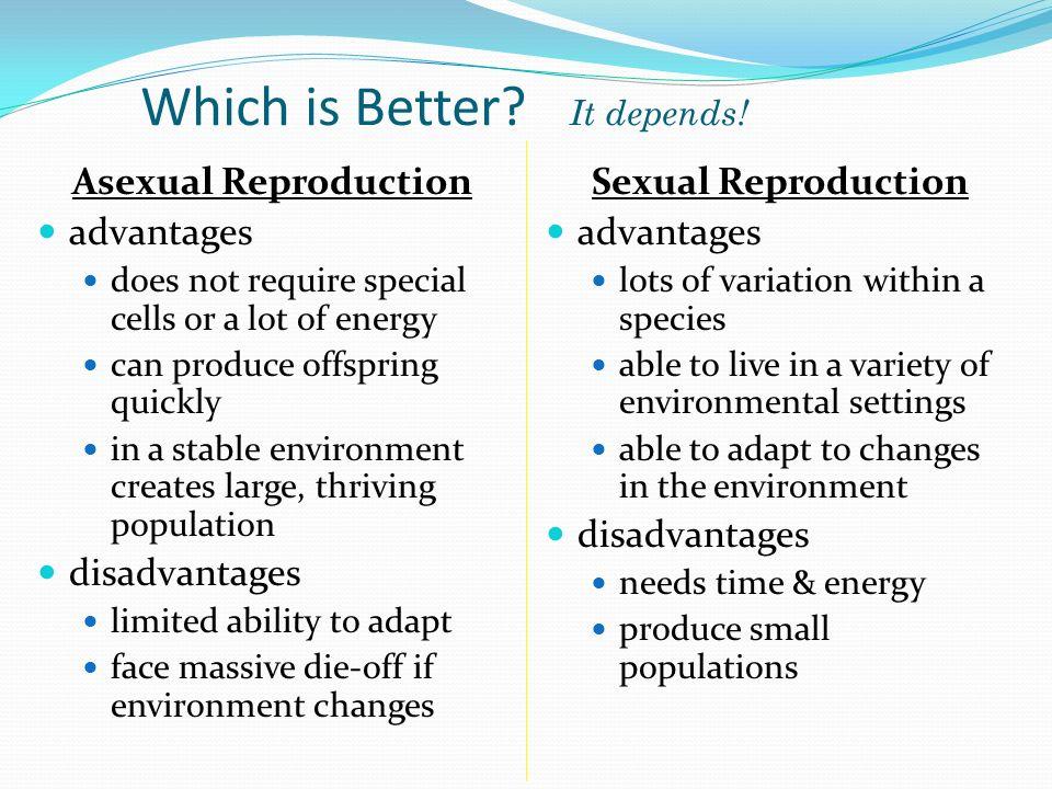 Oligochaeta asexual reproduction advantages