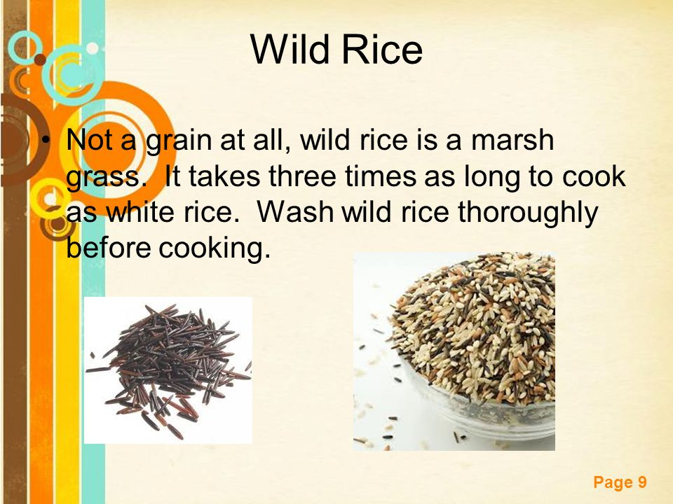 Free powerpoint templates page 1 starter describe the difference free powerpoint templates page 9 wild rice not a grain at all wild rice is toneelgroepblik