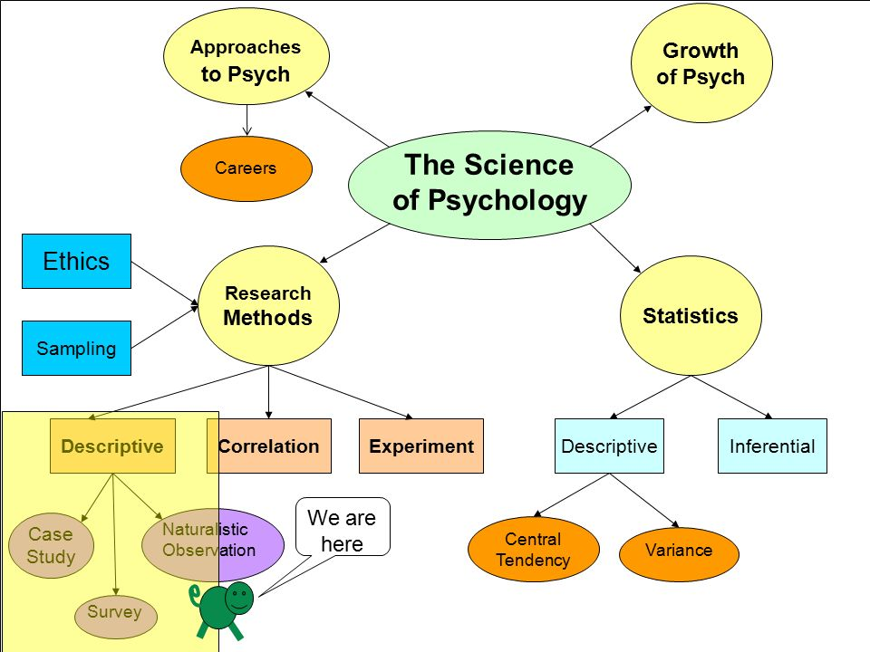 meaning descriptive research method