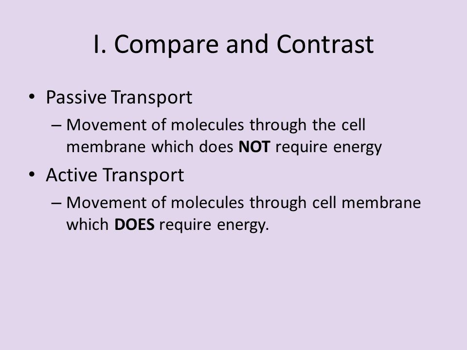 the rate of passive transport through potato slices essay Non-specific, passive diffusion is the most common mode of drug transport across cell membranes nevertheless, many drugs, and in particular drug metabolites, are also subject to protein-mediated active or passive transport.