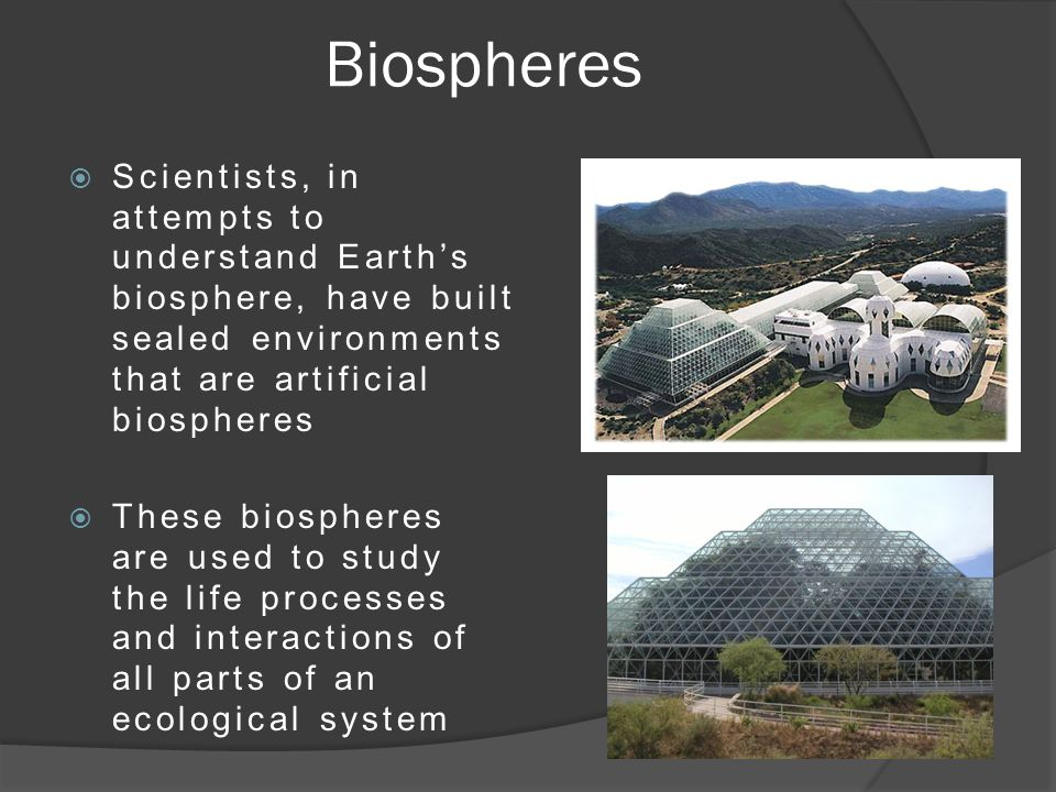 Biospheres  Scientists, in attempts to understand Earth's biosphere, have built sealed environments that are artificial biospheres  These biospheres are used to study the life processes and interactions of all parts of an ecological system