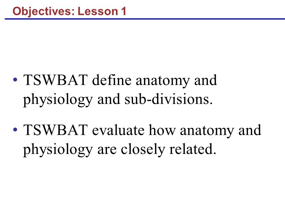 Objectives: Lesson 1 TSWBAT define anatomy and physiology and sub ...