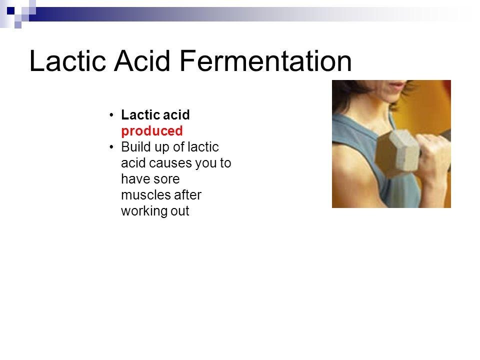 Lactic Acid Fermentation Lactic acid produced Build up of lactic acid causes you to have sore muscles after working out