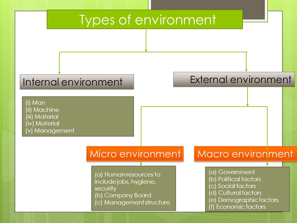 business environment of a company