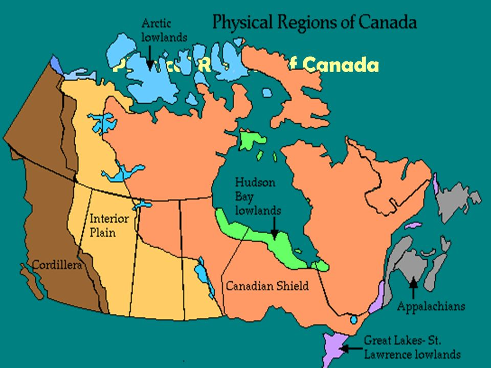 Physical Features of Canada. Physical Regions of Canada. - ppt download