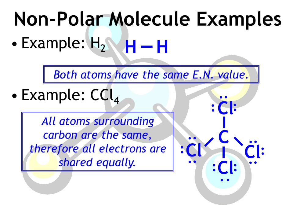 After Today You Will Be Able To Define The Term Polarity Explain