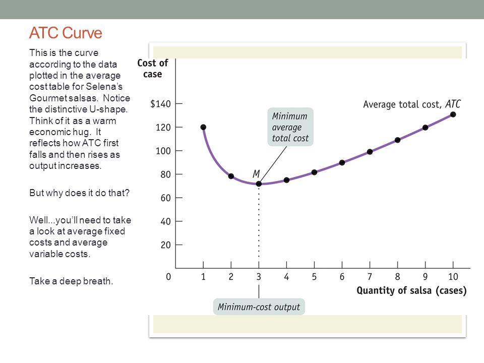 PRODUCTION AND COSTS: FIRM COSTS AP Economics Mr  Bordelon