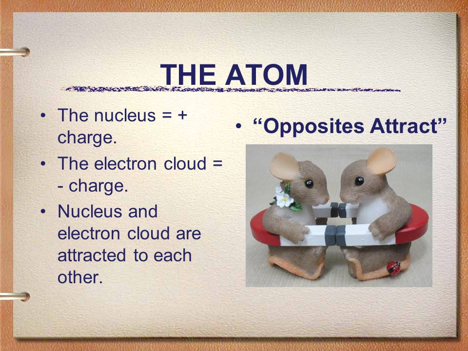 THE ATOM The nucleus = + charge. The electron cloud = - charge.