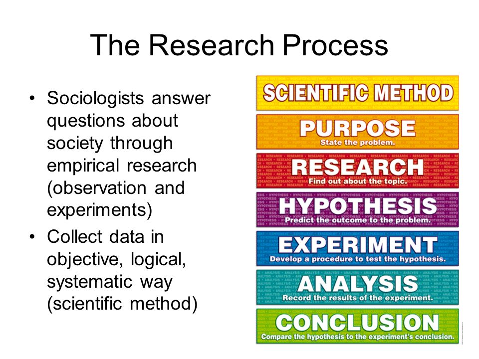 sociology research topic questions