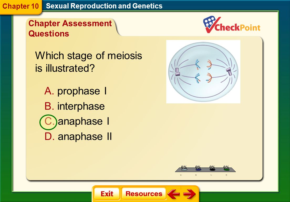 1.A 2.B 3.C 4.D CAQ 1 Sexual Reproduction and Genetics Chapter 10 A.