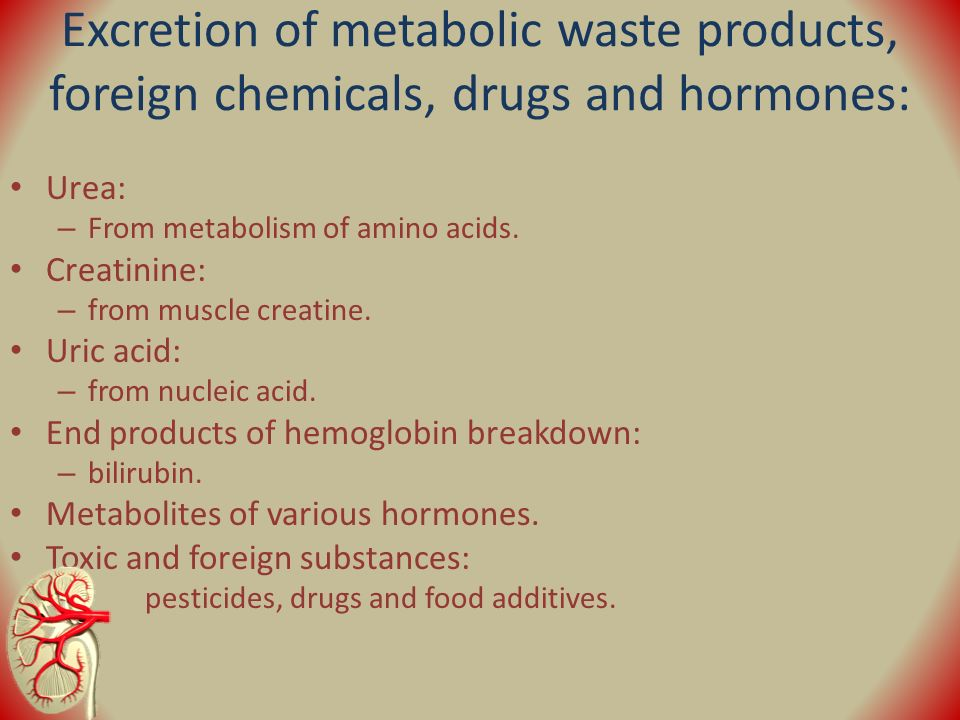 metabolic waste products