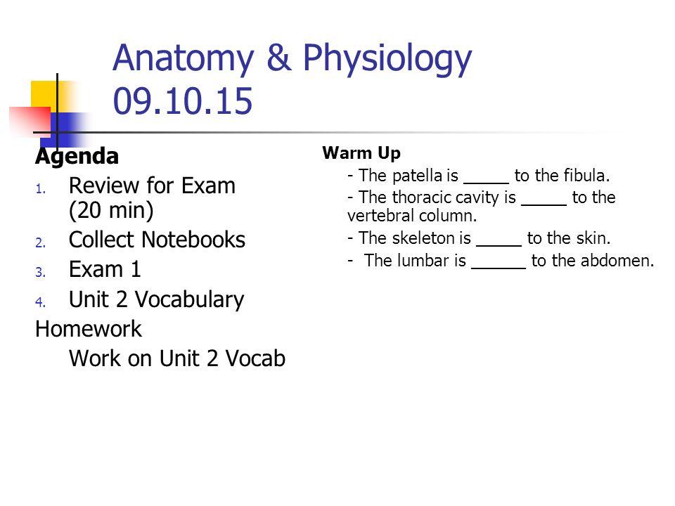 Anatomy Physiology Agenda 1 Welcome 2 Syllabus Etc 3 Find