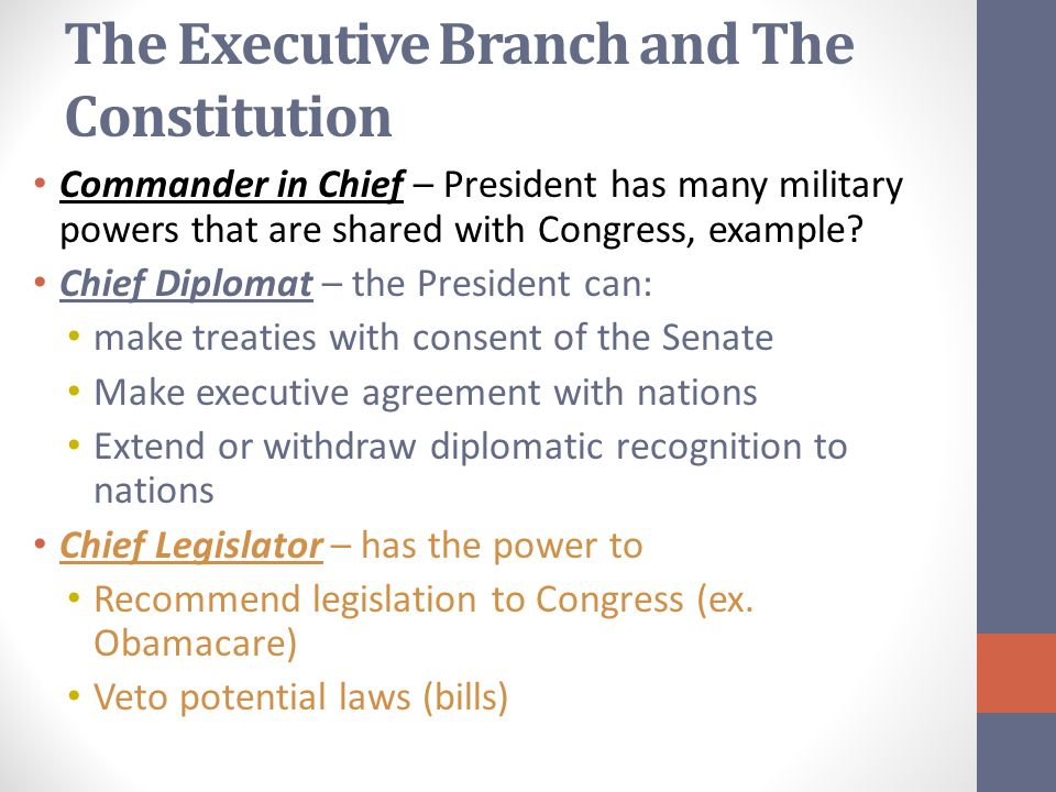 Article Two The Executive Branch Democratic Candidates Barack Obama