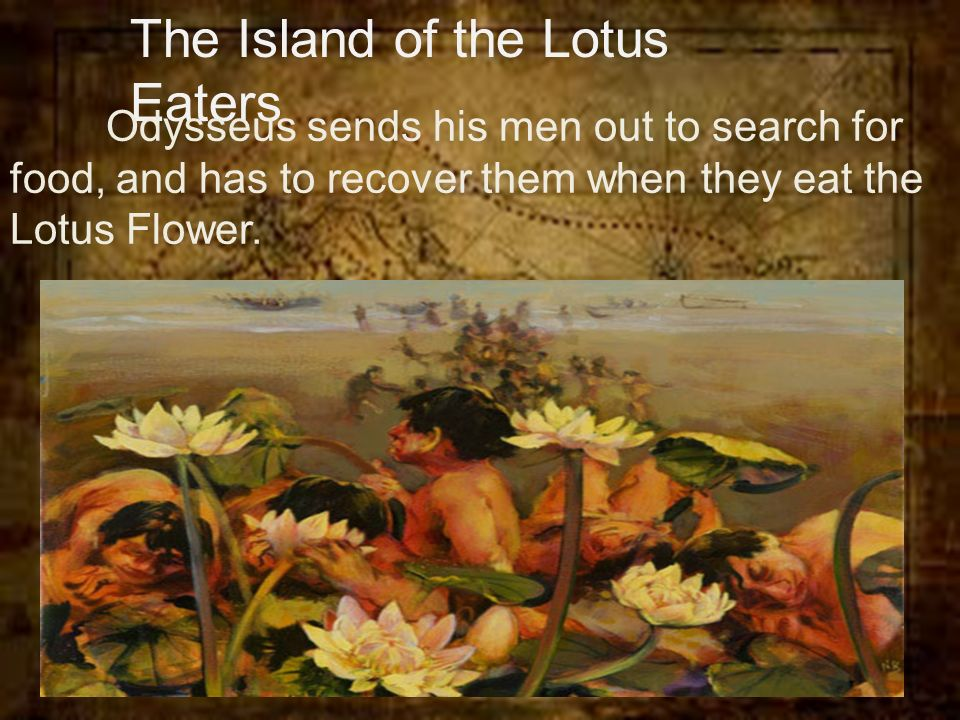 The adventures of odysseus odyssey the adventures of odysseus 1 10 the island of the lotus eaters odysseus sends his men out to search for food and has to recover them when they eat the lotus flower mightylinksfo