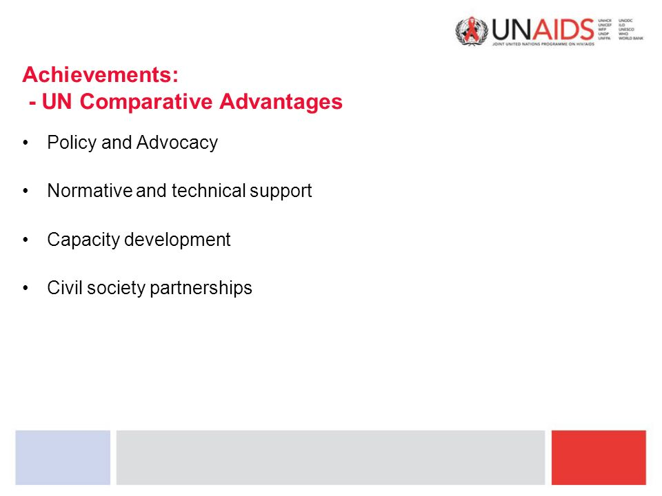 Achievements: - UN Comparative Advantages Policy and Advocacy Normative and technical support Capacity development Civil society partnerships